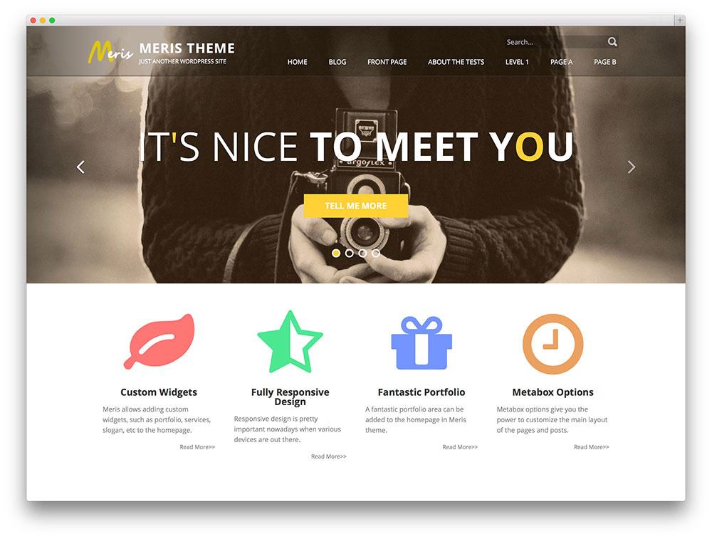 1460044308-6986-meris-agency-theme